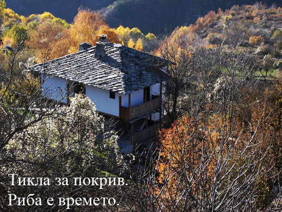 Фото-юген от Ковачевица - 07.11.2010 г.