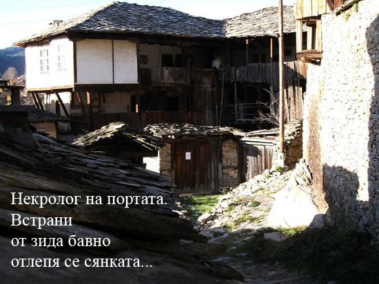 vanya_po_vd-1
